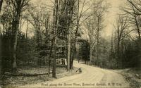 Road along the Bronx River, Botanical Garden, N.Y. City