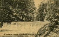 Water fall in Hemlock Grove, Botanical Garden, New York