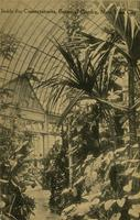 Inside the Conservatories, Botanical Garden, New York City