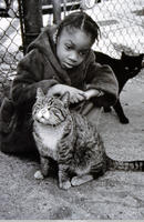Little Girl and Stray Cats.