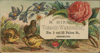 M. Hirsch, Tobacco Warehouse
