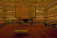 J.P. Morgan's Library, Morgan Library, 2009