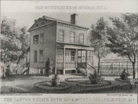 The Caster Estate, Lexington Avenue and East 35th Street, 1865