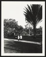 Palm Beach Hotel, children holding hands outdoors, undated [circa 1900-1910].