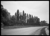 Poplars above W. 181st Street and Riverside Drive, New York City, 1913.