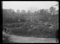 Shakespeare Garden, Central Park, New York City, undated (ca. 1913-1919).