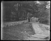 Unidentified path in Central Park, with sign 'To hospital, New York City, undated (ca. 1882-1910).