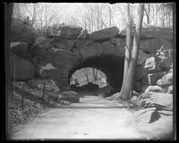 Unidentified stone arch in Central Park, New York City, undated (ca. 1882-1919).
