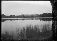 Lake Mansfield, Great Barrington, Massachusetts, September 1903. Emulsion damage.