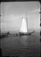 Small sailboat at dock, Marblehead Neck, Massachusetts, 1901.