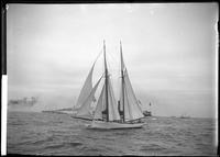 Unidentified schooner yacht taking part in an ocean race (probably the Americas     Cup), September 7, 1895.