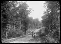Small group walking on a dirt road through the woods at E. 233rd St., Eastchester, Bronx, New York City, 1912.