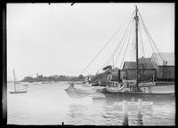 New England harbor scene, Marblehead or Provincetown, Massachusetts, undated (ca. 1890-1910).