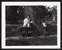 Unidentified children with dog in wagon, undated [circa 1900-1910].
