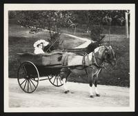 Unidentified girl in carriage drawn by pony, Hot Springs, Va., circa 1904.