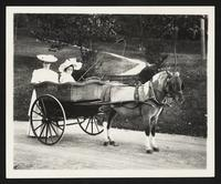 Unidentified woman and girl with carriage drawn by pony, Hot Springs, Va., circa 1904.