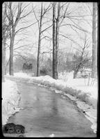 Road, trees and snow in Central Park, New York City, undated (ca. 1890-1919).