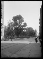 Washington Square Park viewed from Waverly Place, Greenwich Village, New York City, undated (ca. 1912-1919).