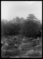 Shakespeare Garden, Central Park, New York City, undated (ca. 1913-1919). The American Museum of Natural History visible in the background.