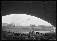 Unidentified Dutch-style farm houses and barns, upper Manhattan, viewed from under a bridge, New York City, undated (ca. 1890-1919). Emulsion damage.