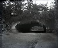 Bridge over Central Park transverse road running from East 79th Street to West 81st Street, New York City, May 11,  1891.