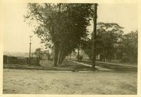 New Utrecht: 1546 84th Street, south side between 15th Avenue and 16th Avenue, August 1924. In hollow.