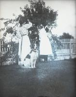 Angie, Sarah, and Flash (dog), near wild cherry tree, Hempstead, N.Y. [?], August 24, 1892.