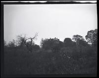 Flsuhing: unidentified house high on hill through shrubs, dead small tree to left, undated.
