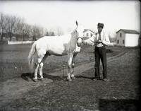 "George Ketchum holding Ned, ""our horse,"" [Hempstead, N.Y.?], April 18, 1891."