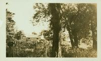Jamaica: John Hendrickson House, south side of Springfield Road, about 500 feet east of Oak Street, 1922.