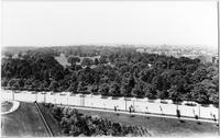 Brooklyn: high-angle view of Prospect Park from the Mount Prospect reservoir, looking southwest over Flatbush Avenue, undated.