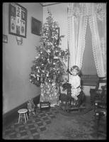 Seymour boy posed seated on rocking horse beside Christmas tree, Christmas 1911.