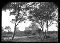 Amagansett / Wainscott, Long Island: [unidentified farm viewed from the opposite side of the road,  through trees, undated.]