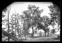 Manhasset / Roslyn / Little Neck / Douglaston / Alley Road, Long Island: [unidentified farm buildings and trees, undated.]