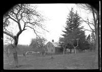 Unidentified Dutch Colonial house on fenced, sloping property, undated. View through orchard beyond.
