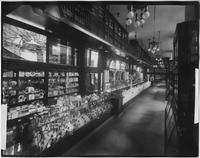 Manhattan: Penn Station (i.e. Pennsylvania Station) arcade, soda counter and candy store interior, undated.