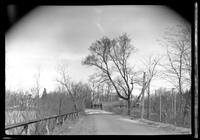 Patchogue / Bell Port / Yaphank / Brookhaven / Middle Island / Selden / Corem: [view down unidentified road, undated. Tall wire fence to right; wood railing to left.]