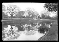 East Hampton, Long Island: [view across East Hampton Town Pond to houses in opposite bank, undated.]