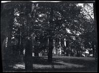 Flushing: [Flushing Institute in summer, undated.]