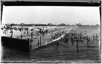 Brooklyn: beachgoers swimming on Coney Island Beach, undated (ca. 1910). Manhattan Hotel in distance, right.