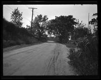 Newtown: [unidentified dirt road, undated. Distant buildings visible.]