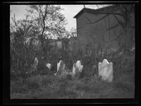 Newtown: [unidentified small, overgrown cemetery next to a house, undated.]