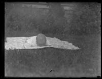 Unidentified infant lying face-down on a blanket on the grass, undated (ca. 1930-1935). Blurred.