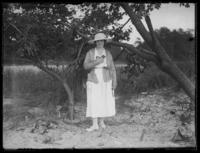 Odessa France Bjorkman sitting in a tree, Baltimore, Maryland, undated (ca. 1917-1918).