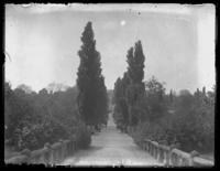 Approach to Mount Clare in Carroll Park, Baltimore, Maryland, undated (ca. 1917-1918).
