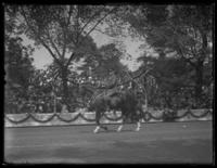 General John J. Pershing riding in a victory parade, Washington D.C., undated (1918).