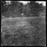 Unidentified lawn with robin, and woman mowing in the background, undated (ca. 1905-1915).