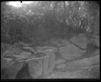 Horse trough near 105th-107th Streets, McGown's Pass, Central Park, New York City, October 26, 1897.