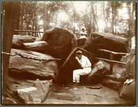 Unidentified boy drinking at Montaigne's Spring, McGown's Pass, Central Park, New York City, July 23, 1898.