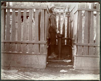 Unidentified boy at Tiemann's spring, 129th Street and Manhattan Street at Daniel F. Tiemann's paint factory, New York City, September 26, 1897.